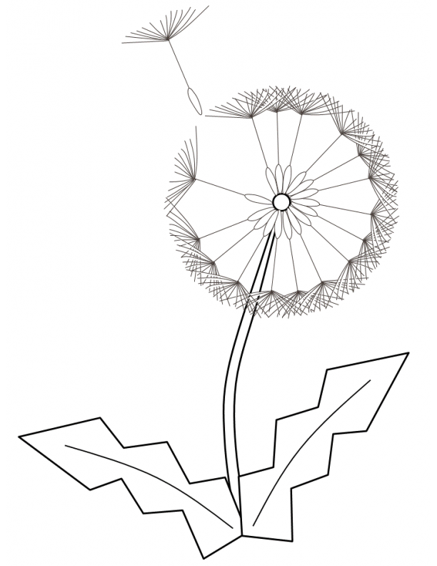 Index Of ColoringPages Nature Flowers